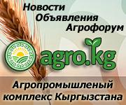 Новости, объявления, информация о сельском хозяйстве Кыргызстана на сайте Agro.kg